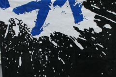2009-09-23 Tvåpinnsflaggor